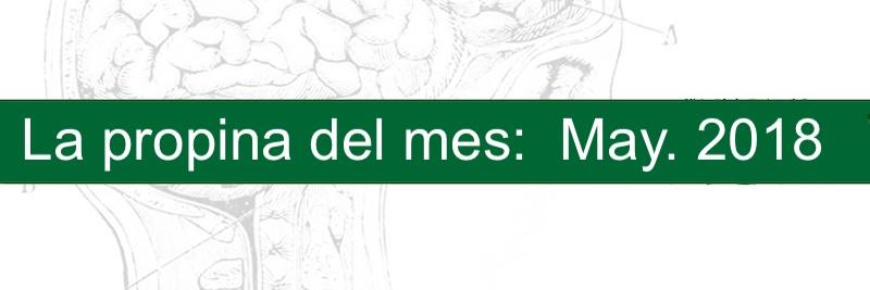 Profesor Manuel Gurpegui, la propina del mes Mayo 2018