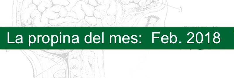 Profesor manuel gurpegui La propina del mes febrero 2019