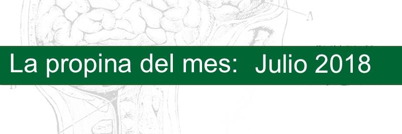 Profesor Manuel Gurpegui, La propina del mes, Julio 2018