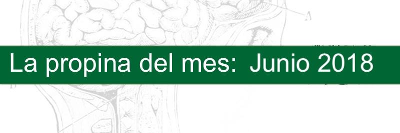 Profesor Manuel Gurpegui, la propina del mes Junio 2018
