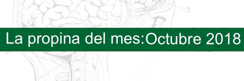 Profesor Manuel Gurpegui, La propina del mes: Obsessio, compello y scrupulus