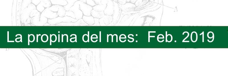 Profesor Manuel Gurpegui, La propina del mes: Febrero 2019