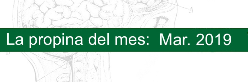 Profesor Manuel Gurpegui, La propina del mes: Marzo 2019