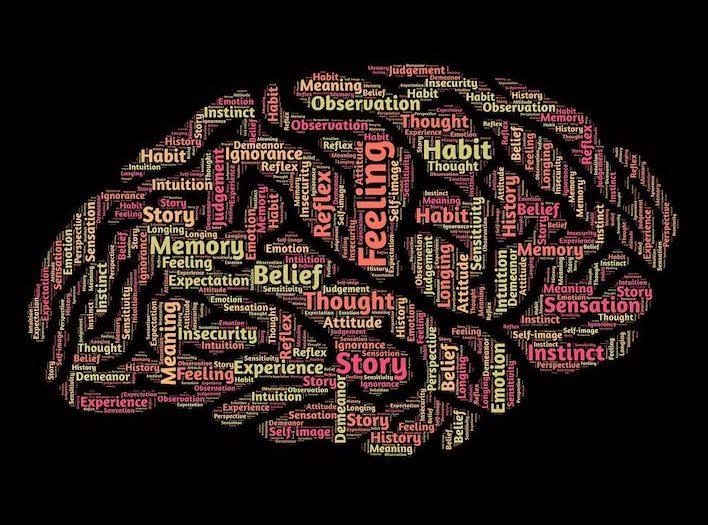Diversidad mental en una misma persona